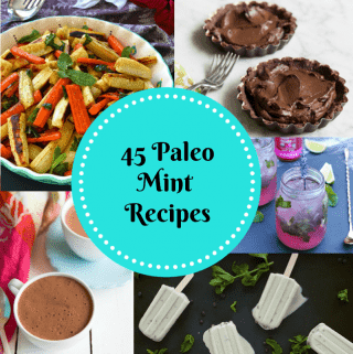 Paleo Mint Recipe Wrap-up
