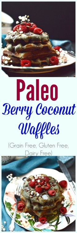 Paleo Berry Coconut Waffles are the perfect grain free breakfast. Made without any dairy these waffles still taste amazing! Serve these paleo berry waffles at your next brunch and they are sure to be a hit!#paleo #waffles #pancakes #breakfast #glutenfree