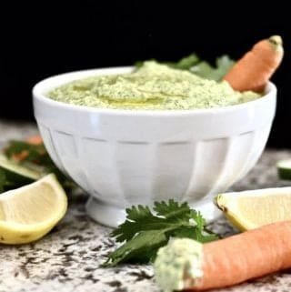 Whole30 Citrus, Cucumber and Cilantro Dip (Paleo, GAPS, SCD, Vegan)