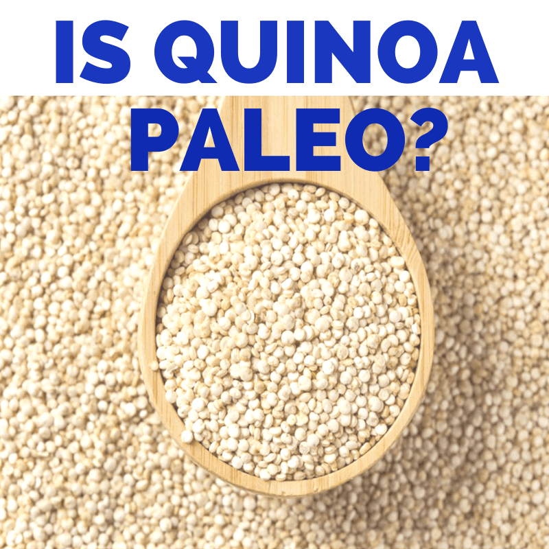 "A spoonful of quinoa with the title ""is quinoa paleo?"""