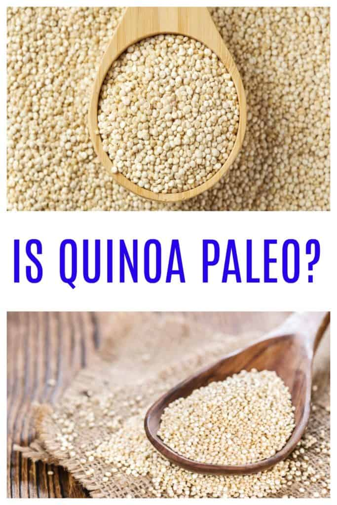 A spoonful of quinoa