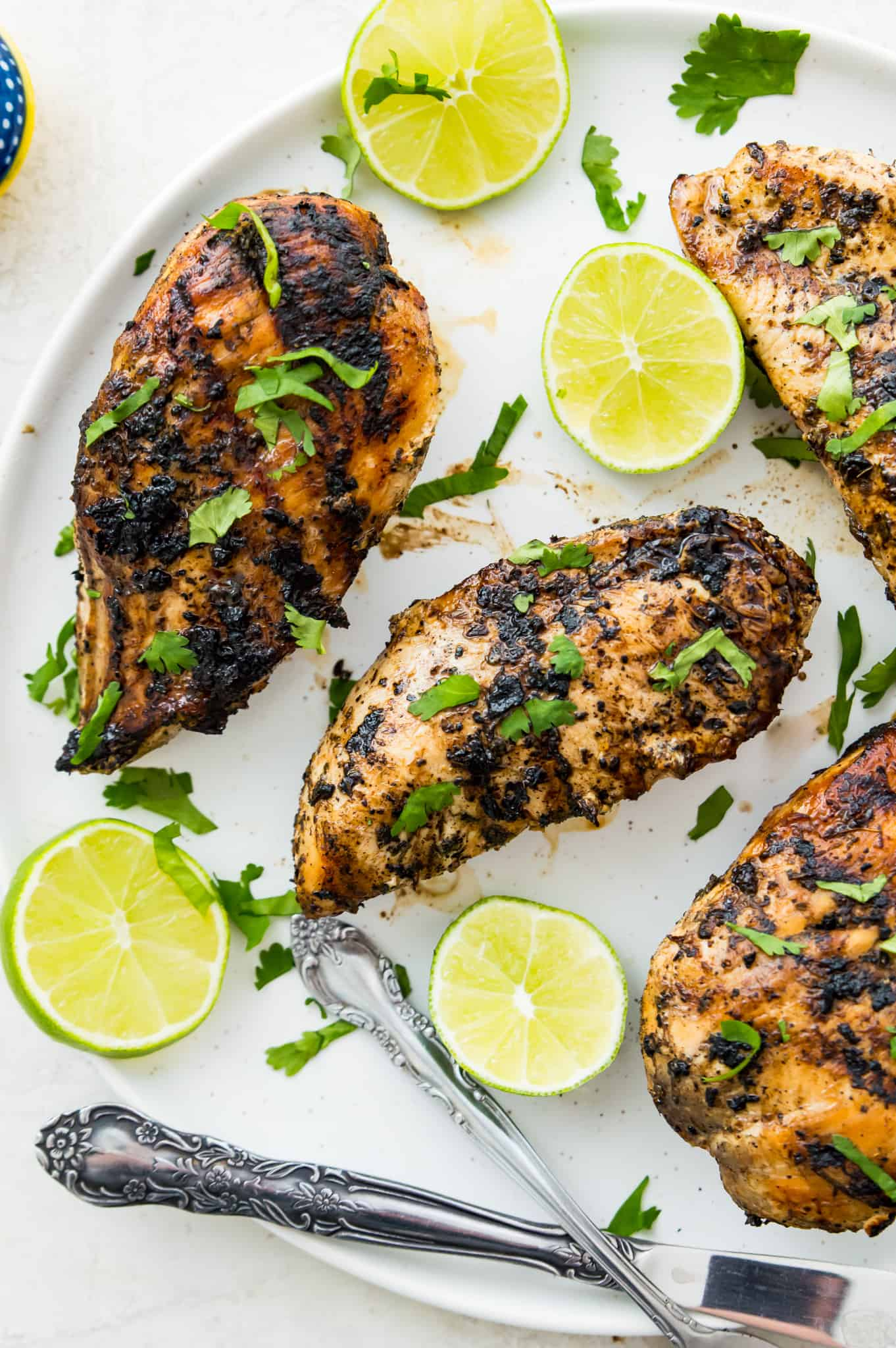 Grilled chicken breasts on a white plate with garnished with limes and cilantro